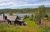 landscape of norway near hardangerfjord