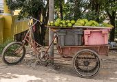 Tricycle in the streets of Havana, Cuba loaded with fruit