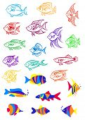 Colorful cartoon underwater fishes