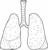 Outlined Lungs