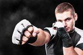 Boxer's Fist
