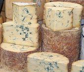 Blue Vein Cheese.