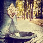 Public Water Fountain In Park  In The Form Of Lion Head
