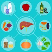 Infographics Of Food For Helpful For Healthy Liver