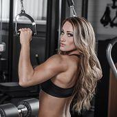 Sexy Bodybuilder Pulldown Practice In Gym