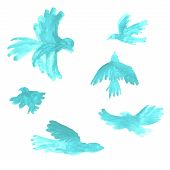 Blue Watercolor Birds Drawings On White Background