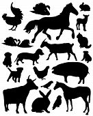 stock photo of polly  - Set of vector illustrated domestic animals silhouettes - JPG
