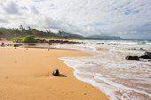The coconut on the beach, Hawaii