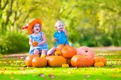 Funny children At Pumpkin Patch