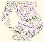 Word Cloud Illustration Related To Pregnancy.