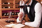 Sommelier Examining Wine.