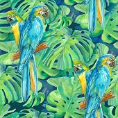 seamless pattern element of two ara parrots and leaves of monste