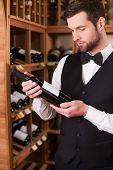 Wine Expert Choosing Wine.