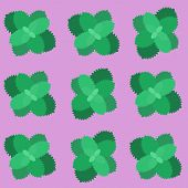 Sprigs of mint background