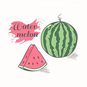 Vector Illustration Of Juicy Watermelon