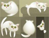 White cat character