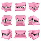 3D Models Of Cat Teeth Cast.