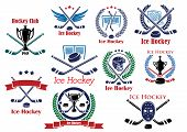 Heraldic logo and emblems for ice hockey club