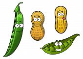 picture of pea  - Cartoon opened green pea pods with stalk and glossy peas and whole peanuts in yellow dry shells with funny smiling faces for vegetarian or healthy nutrition - JPG