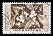 Madagascar 1956