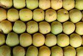 Row of green apples arrangement