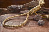 Noose knots