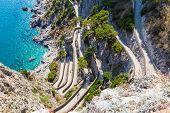 Twisty Road On Capri Island