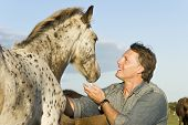 stock photo of appaloosa  - A color portrait photo of an outdoor man petting a young appaloosa horse - JPG