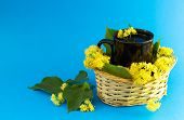 pic of lime-blossom  - Black cup of tea in braided wicker basket filled with lime blossom on blue background - JPG