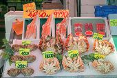 picture of hairy  - Japanese hairy crabs in morning market at Hakodate Hokkaido Japan - JPG