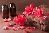 stock photo of azalea  - spa bathroom with azalea flowers essential oil on dark rustic background - JPG
