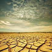 picture of drought  - Drought land - JPG