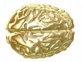 Cérebro dourado