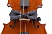 Violin With Bow Tie