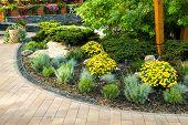 Flowerbed In The Yard In Landscape Design poster