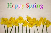 Spring Flowers Of Blooming Spring. Happy Spring. Natural Spring Flower, Closeup Of Spring Flowers Bl poster