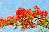 Impressionist Flowering Branch