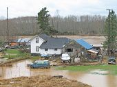 Chehalis River Flood Aftermath, 2007