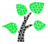 Flora Plant Mosaic Icon Of Rectangles And Circles In Various Sizes. Vector Items Are Organized Into  poster