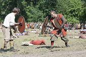 Fighting Vikings