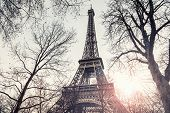 Eiffel Tower View Through The Trees In Paris, France. poster