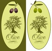 Set Of Labels For Olive Oils. Extra Virgin Olive Oil Labels With Black And Green Olives Vertical Ban poster
