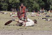 Fighting Vikings - Worrior Falling