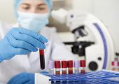 Blurred Lab Assistant In Protective Medical Clothes Choosing Blood Sample In Test Tube For Analysing poster