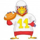 Divertido loro de dibujos animados carácter aislado sobre fondo blanco. Rugby. Vector EPS 10.