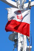 Polish Flag Flapping In The Wind poster