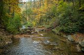 A Fast Current River Flowing Downstream Rapidly Along The Rocks And Boulders With Colorful Autumn Tr poster
