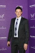 LOS ANGELES - JUNE 9: Cory Monteith at the 11th Annual Chrysalis Butterfly Ball held at a private re