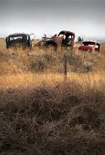 Abandoned Cars Farmland. Old Abandoned Trucks In The Pacific Northwest. poster
