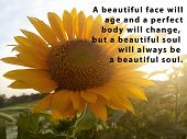 Inspirational Motivational Quote - A Beautiful Face Will Age And A Perfect Body Will Change, But A B poster